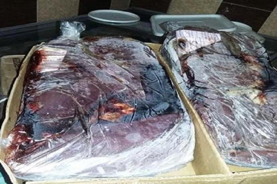 إعدام 37 كيلو مواد غذائية غير صالحة للاستهلاك في منشآت سياحية بمطروح