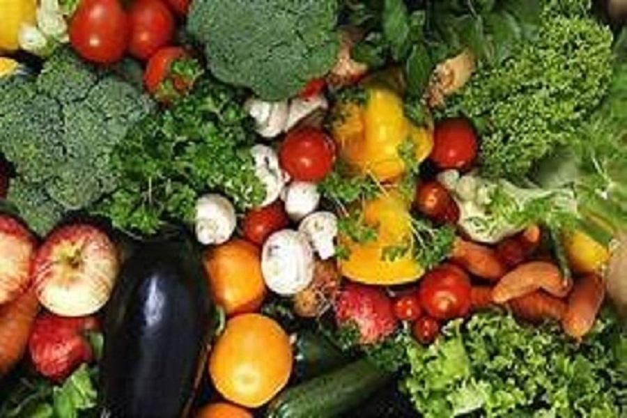 312 مليون دولار صادرات الإسماعيلية الزراعية للأسواق العربية والأجنبية بـ7أشهر
