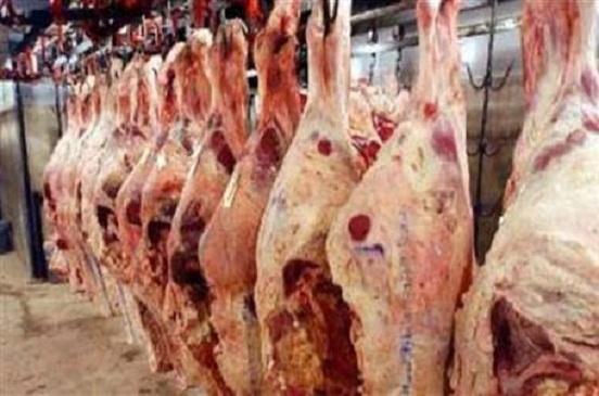 ضبط 33 طن لحوم مذبوحة خارج المجازر الحكومية بالجيزة