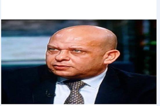 الحناوى :لقاء السيسى برؤساء الشركات النمساوية  يجذب الكثير من الاستثمارات الى مصر