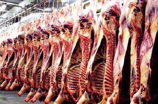 توقعات بارتفاع أسعار اللحم البقري والدواجن عالميا خلال ديسمبر 2019