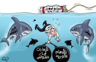 السيناريو المصرى بعد 30 يونيو فى كاريكاتير