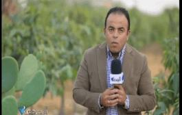 شاهد.. غانم: يدعو هيئة قناة السويس للإعلان عن شروط فتح منافذ تسويق الأسماك للشباب