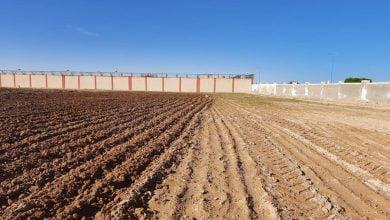 """""""بحوث الصحراء"""": مشروع حقن التربة الرملية بالطين إنجاز جديد لاستصلاح أراضي الدلتا الجديدة"""