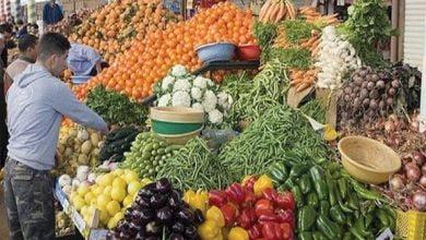 ارتفاع البطاطس والفاصولياء.. أسعار الخضراوات اليوم الأربعاء 4 أغسطس