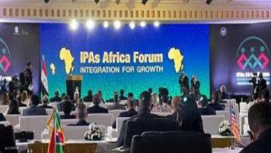 تنزانيا تدعو المصريين للاستثمار في الزراعة.. وتكشف عن فرص ذات أرباح خيالية